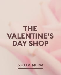 The valentines day shop. Shop now