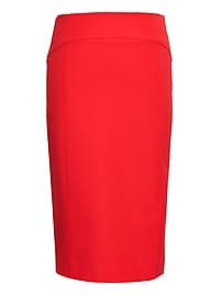 Bi-Stretch Paneled Pencil Skirt