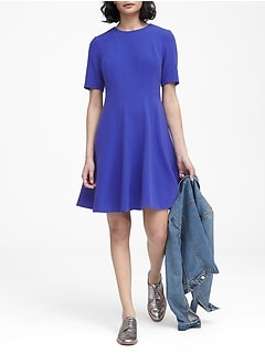 Petite Paneled Fit-and-Flare Dress