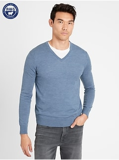 Merino V-Neck Sweater in Responsible Wool
